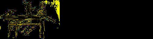 Schoorsteenvegersbedrijf 't Westen logo